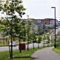 suburban areas create habitat for urban wildlife. Photo Credit: Dan Reed